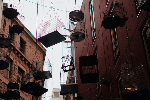 Sneaky Streets & Hidden Treats by Urban Hunt